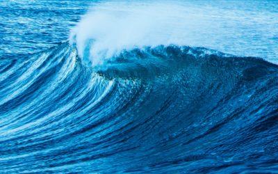 La deuxième vague…